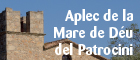 Aplec del patrocini